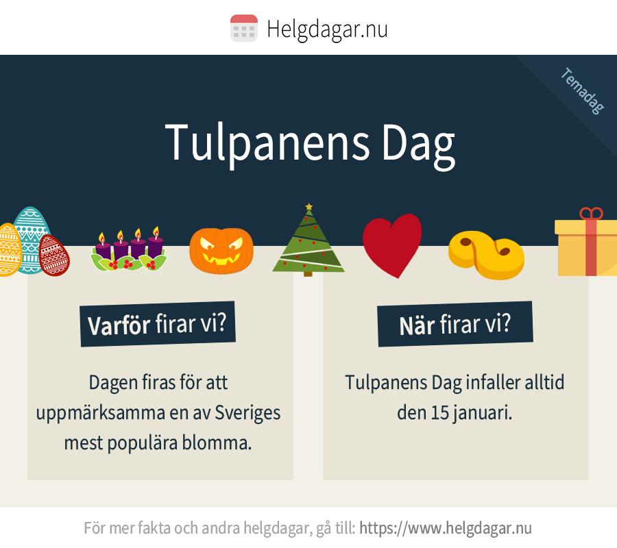 Faktakort om tulpanens dag