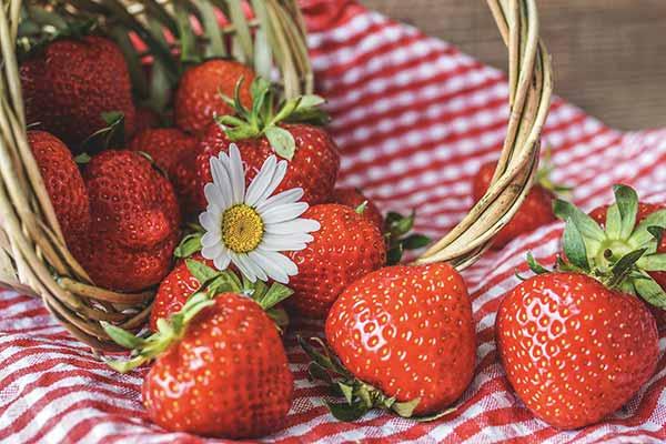 När det är midsommar äter vi jordgubbar